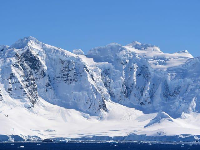 Antarktika Kaşiflerinin Beyinleri 14 Aylık Kutup Keşfi Sırasında Küçüldü