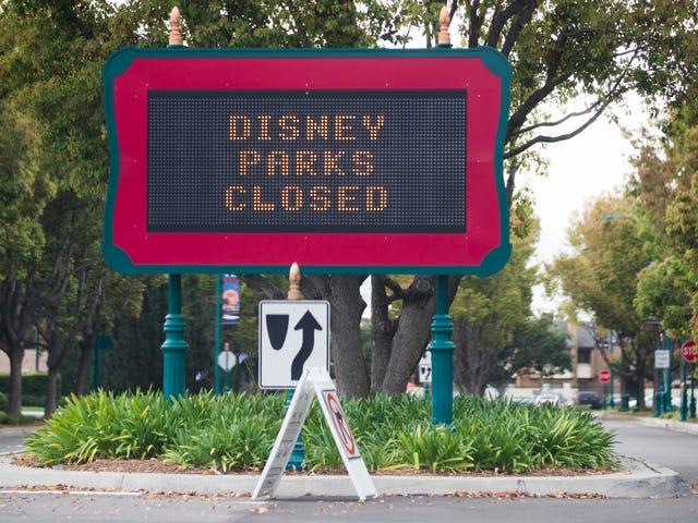 Disney parkları kapalıyken, bir kadın evde Disney World'ü yeniden yaratmaya karar verir. Şaşırtıcı derecede büyülü