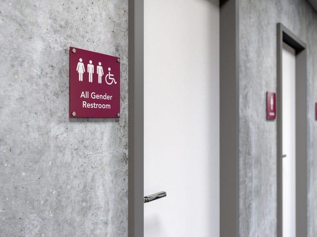 Swastika faite d'excréments trouvés dans la salle de bain neutre de genre au RI College