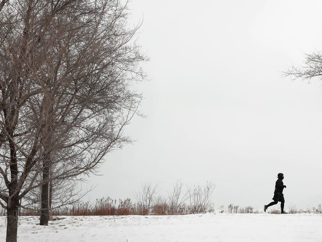 No Such Thing as Too Much Exercise, Study Finds<em></em>