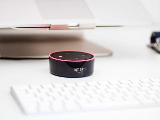 Cara Menyokong Teguran Amazon Prime Day