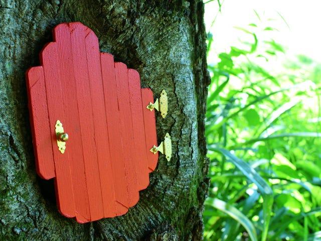 Ağacıma bir kapı koy