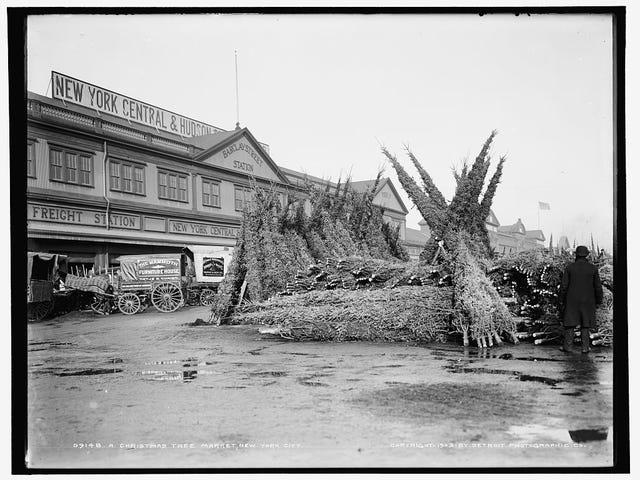Mercado de árboles de navidad