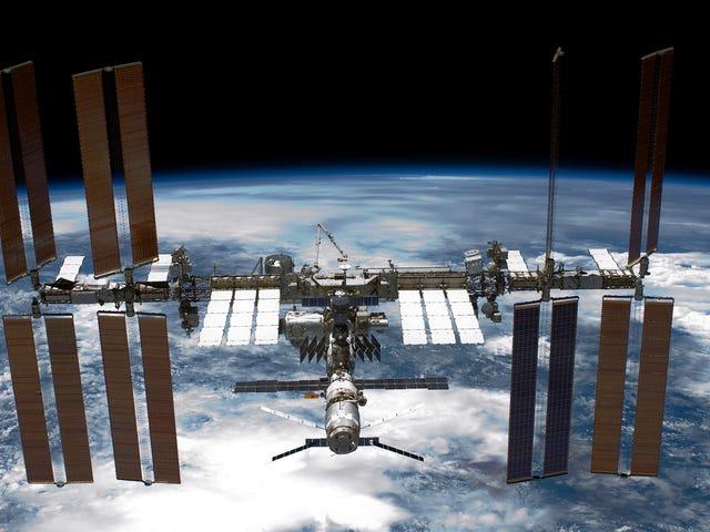 NASA Scientists finner muligens smittsomme superbugs om bord på ISS