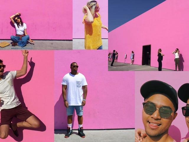 Hvad er den Big Fucking Pink Wall i din by?