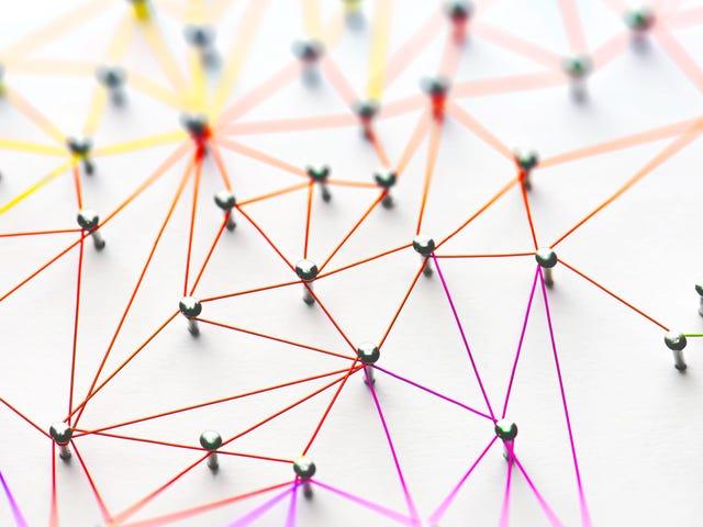 ネットワークをタップして、発生するすべてを確認する方法