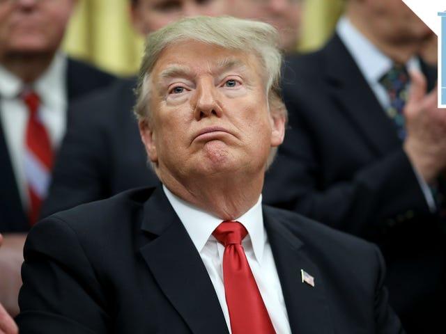 De fleste amerikanere vil ikke have en mur, vil Trump til at lukke sit Pie Hole