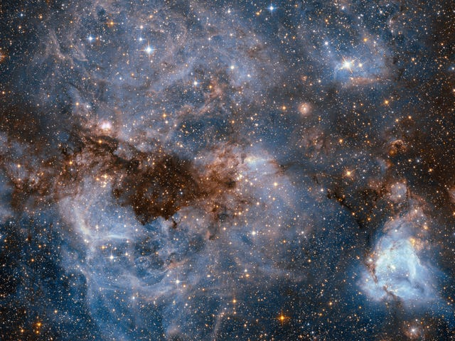 This Churning Nebula Is a Massive Star Factory