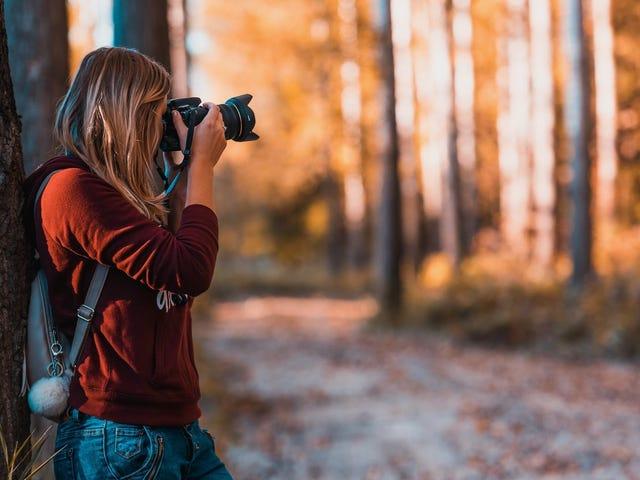 Conviértete en un mejor fotógrafo con este desafío fotográfico de 52 semanas