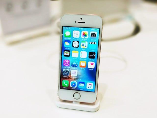Apple kunne lancere iPhone SE 2 i begyndelsen af 2020 til en pris på $ 399