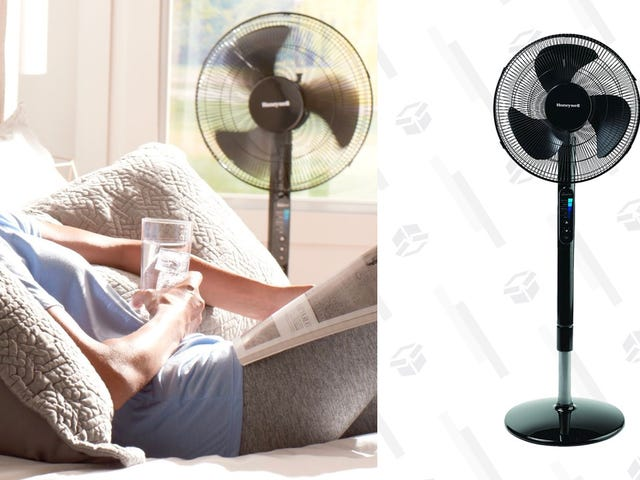 Survive The Summer With This Discounted Honeywell Pedestal Fan