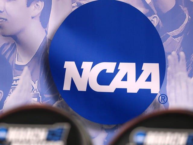 Toisin kuin NCAA, jotkut valtiot ja kaupungit eivät purra Pohjois-Carolinan heikkoa HB2-kumoamista