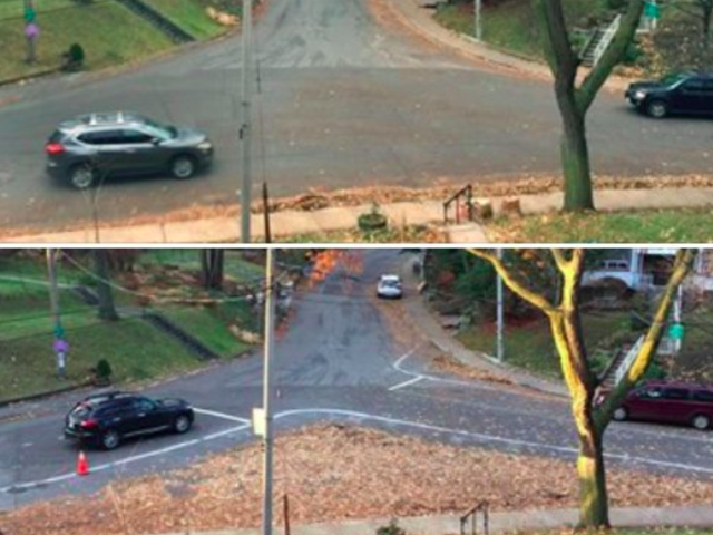 Some Brilliant Toronto Residents Fixed This Intersection With Chalk And Leaves
