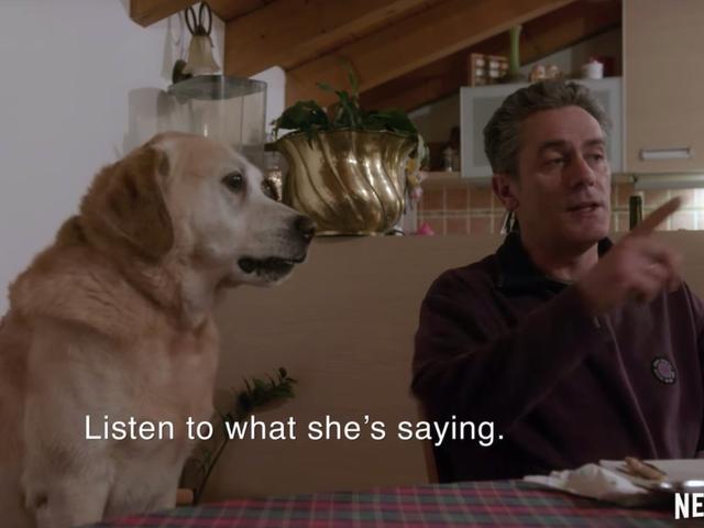 เราทุกคนต่างเฝ้าดูสารคดีเกี่ยวกับ Good Dogs