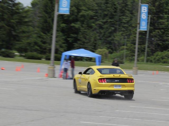 10/10 Mustang.