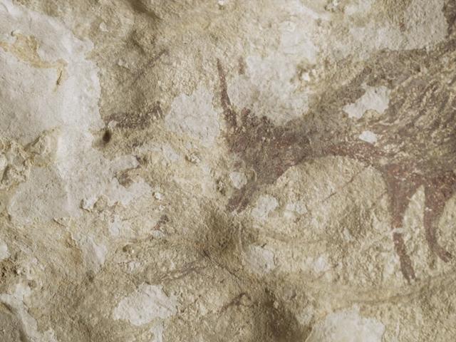 Bức tranh hang động 44.000 năm tuổi có thể là sự miêu tả sớm nhất về săn bắn