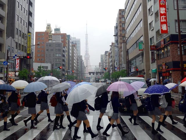 Deszczowe popołudnie