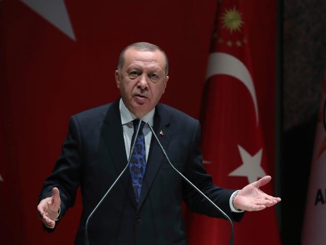 Turkiska domstolen kastar ut Erdogans Wikipedia-förbud