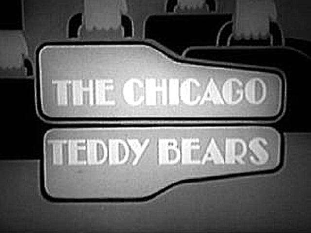 Chicago Teddy Bears