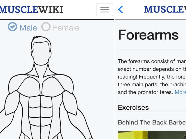 App MuscleWiki розміщує зручну базу даних вправ на вашому телефоні