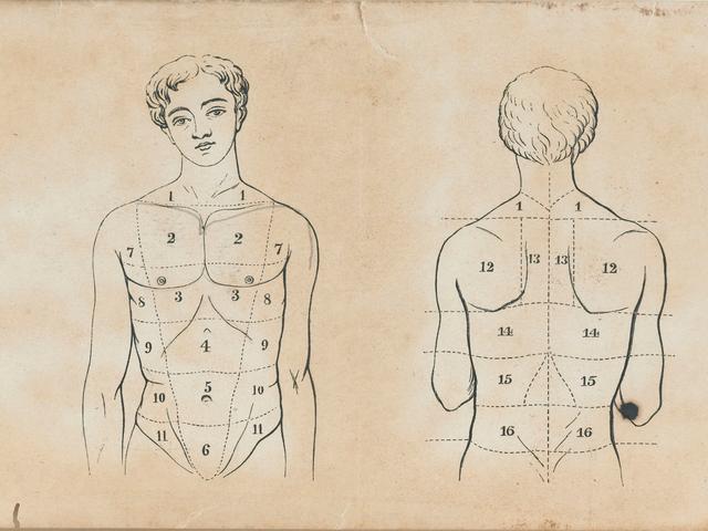 Viagra kan lindre periodekramper, men manlige farmaceutiske præparater plejer ikke