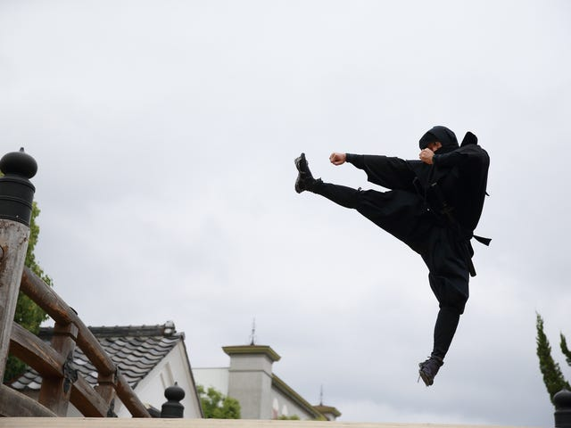 6 Jobs I Might Have to Look Into Now That I Know You Can Get a W-4 for Being a Real Ninja