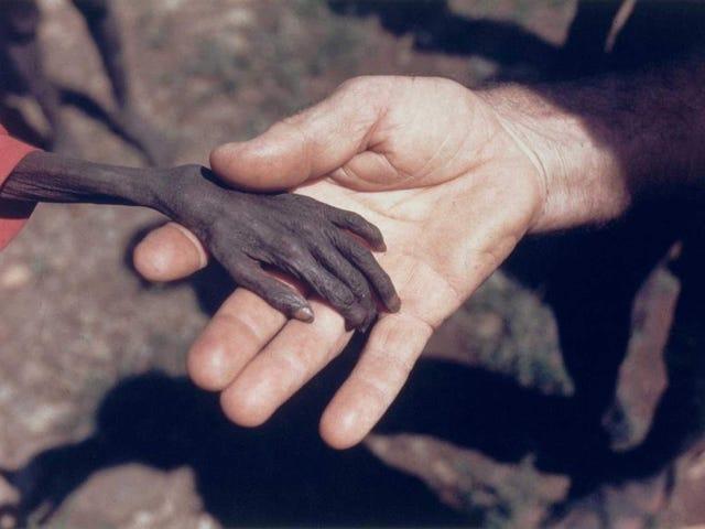 La historia detrás de esta devastadora nhiếp ảnh: el niño que se muere de hambre y el misionero en Uganda