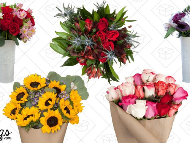Send Someone Flowers Just Because With Double Discounts from The Bouqs