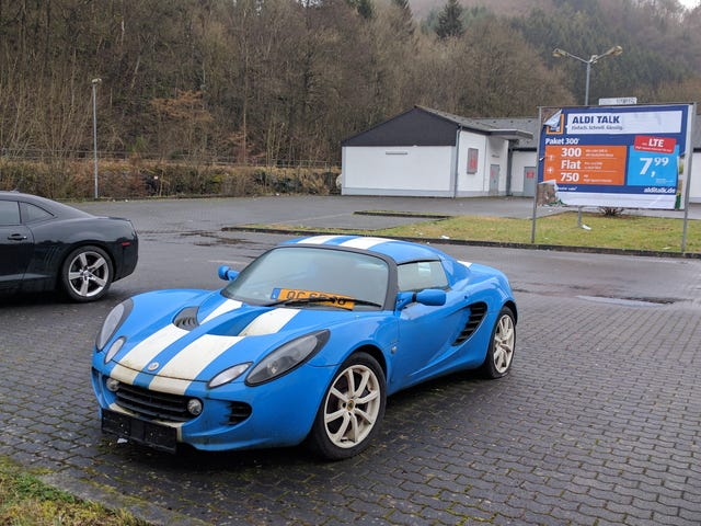 Lost Little Lotus from Luxemburg