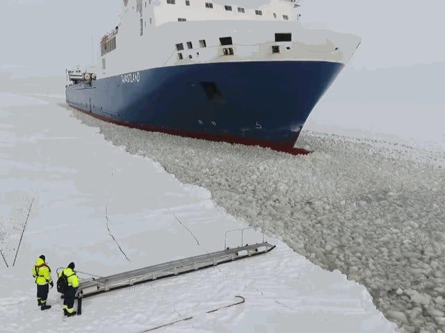 Asíes como suben los marinos finlandeses a bordo de un carguero de 200 metros en movimiento