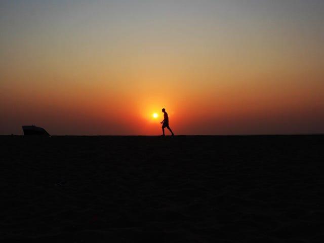 长时间和早晨的早晨不是成功的关键