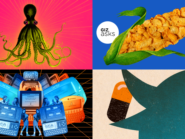 Octopuses on Ecstasy, Weight-Loss Scams, and Neutron Stars: Best Gizmodo Stories of the Week