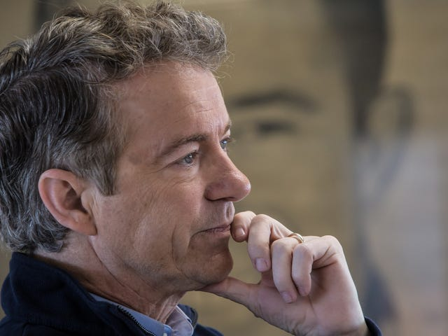 What the Frick Is Going on With Rand Paul and His Neighbor, Someone Tell Me Right Now