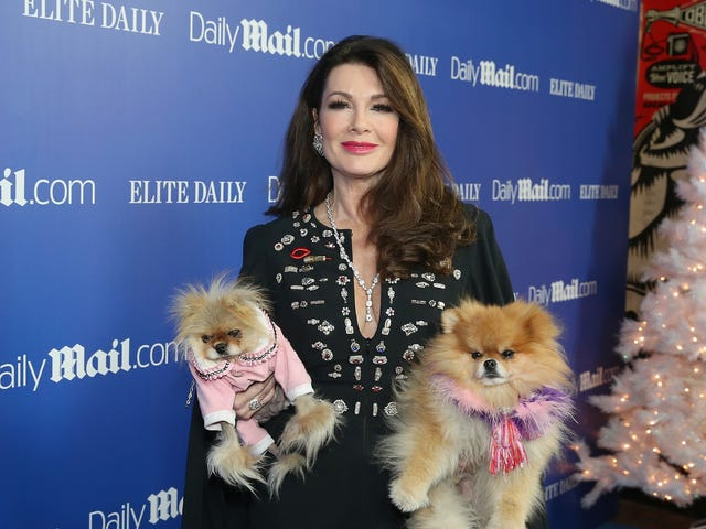 Lisa Vanderpump's Dog Foundation is Facing a Sexual Harassment Lawsuit