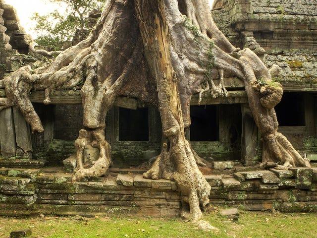 Chị em người Mỹ bị bắt vì lấy ảnh tự sướng ở chùa Campuchia