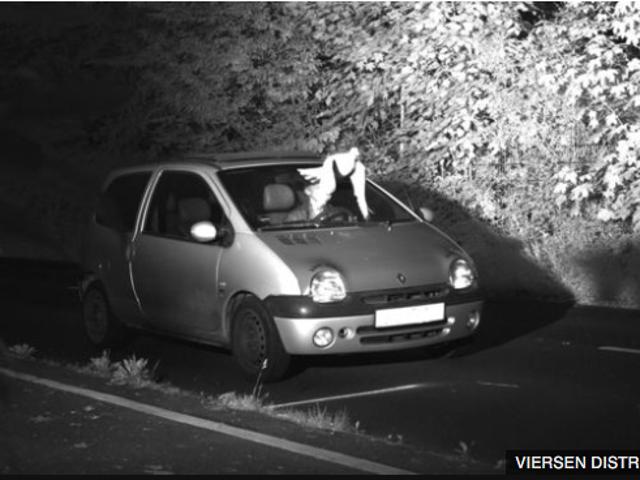 speeding Twingo driver spared fine