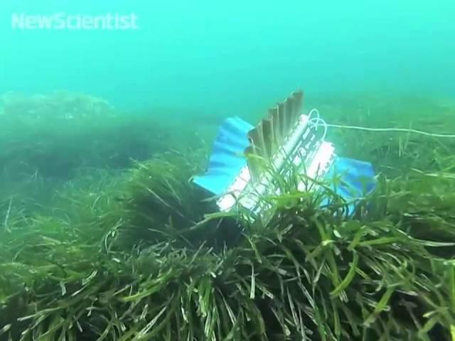 Deze robot kopieert een inktvis om een betere zwemmer te zijn