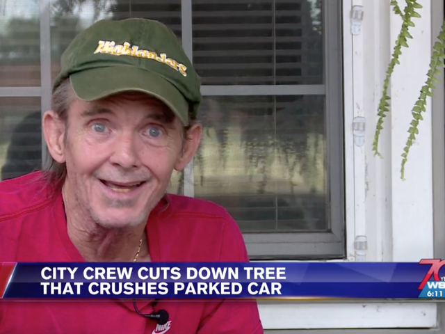 "West Virginia Man On Tree Crushing Local Student's Car: ""Odio dirlo, ma è stato piuttosto bello"""