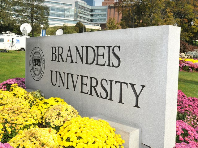Brandeis Suspends Athletic Director Who Failed To Act When A Coach Told A Player He'd Ship Him Back To Africa