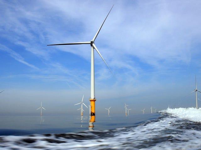 特朗普政府本周举行了创纪录的海上风电租赁业务
