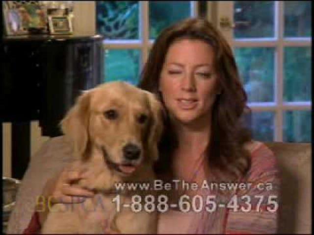 Sarah McLachlanは悲劇的に悲しいASPCAコマーシャルを見ることができない