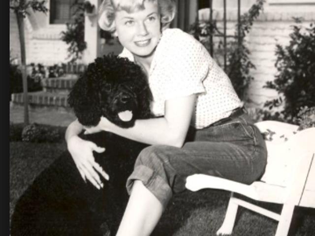 Sigh...Doris Day forever