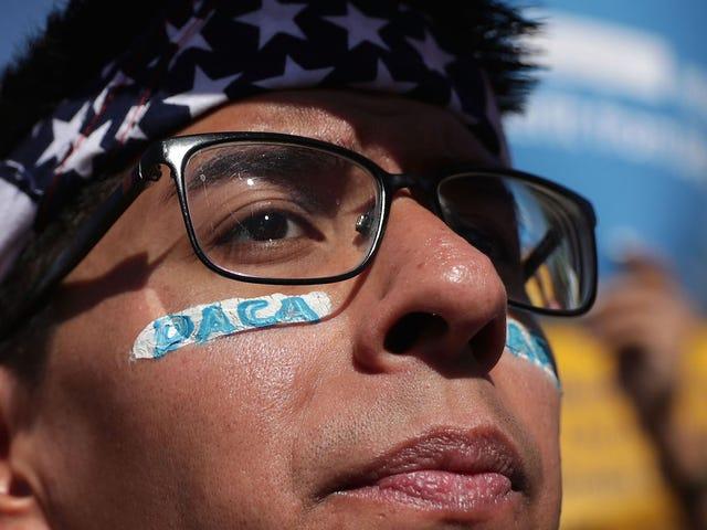 트럼프, 화요일 DACA 종료 예정