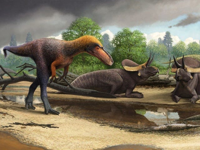 Newly Discovered Cousin of T. Rex Was a Pint-Sized Killer