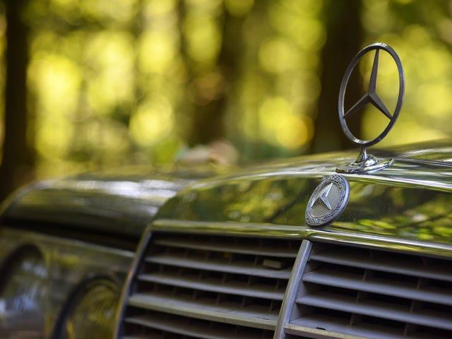 Morning Mercedes
