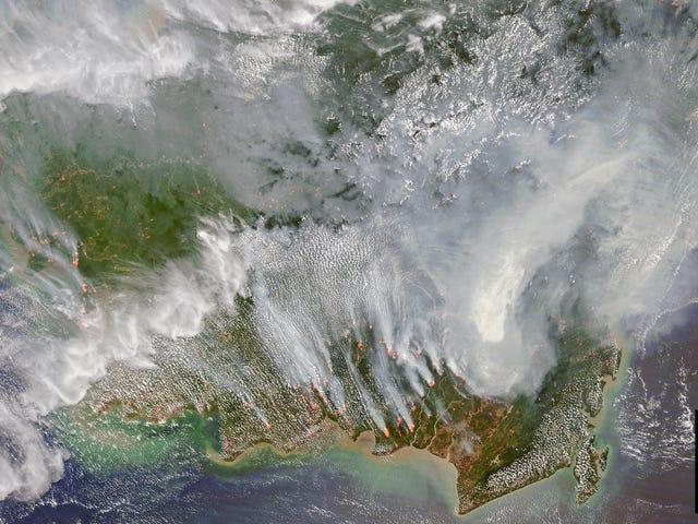 On Yıllık İklim Değişikliğini Gösteren Uydu Görüntüleri