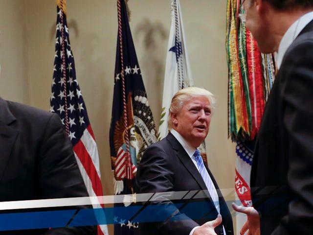 Trump Mengatakan bahwa Lingkungan Hidup 'Tidak Terkendali' Dalam Sarapan Dengan Para CEO Automaker