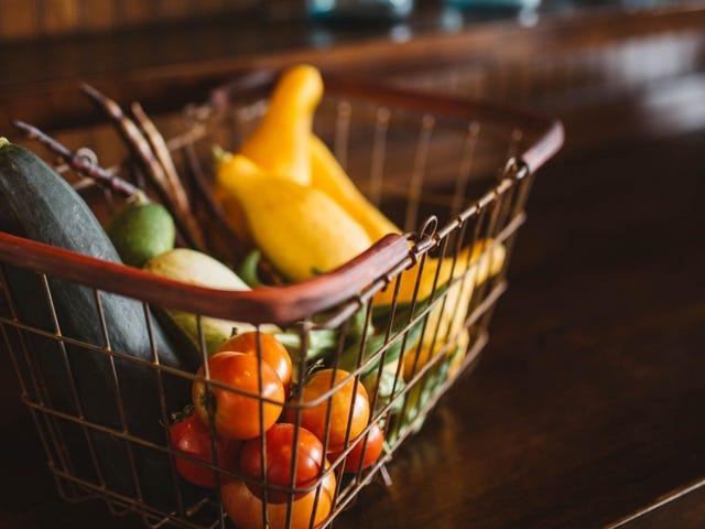 Nos meilleures recettes végétariennes pour tous vos besoins alimentaires sains