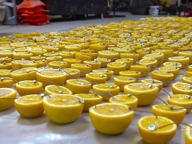 Hvad sker der, hvis du prøver at starte en bil med et batteri lavet af 1.000 citroner