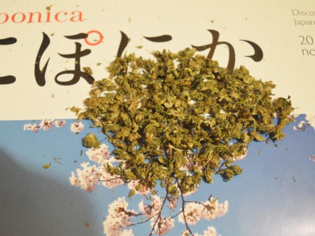 Por qué Japón s tan estricto con las drogas